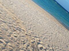 とりあえず今のうちに海行くぞー! 車で5分位の瀬底ビーチへ。 おお、冬でも綺麗な沖縄の海…。