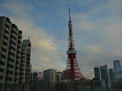 そして東京タワーも綺麗に見えました