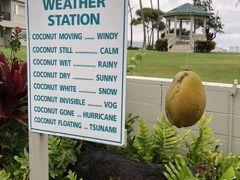 マウイビーチホテルは相変わらずローカルです。こんなココナッツの天気予報