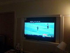 NFLシーズンだから、浴びるほどNFL見られるわー!とNFLファンの私は期待してたのですが、ローカルのテレビはカレッジフットの方が多いですね。
