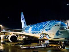 成田空港   出発ゲ-ト「C4」に駐機しているA380機。  現在、ブル-機・ミドリ機の2機で運用。  目に注目。