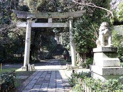それから、赤坂サカスを後にして歩くこと15分、赤坂氷川神社に到着。