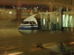 羽田空港17:05にスポットイン。 4レグに渡った中国国際航空での空の旅もこれで終了。 感傷に更けるヒマなく優先降機で追い立てられるようにターミナルへ。  もうちょっとゆっくりして旅を終えたかったな。
