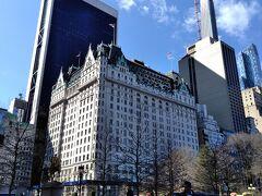 あのプラザホテルを望む、Doris C. Freedman Plaza。 (芸術作品たちは、この背景側です。)