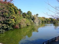 郡山城の背後にある郡山高校の周辺は城址公園になっている。かつてお濠だった鰻堀池や鷺堀池が残り、散策ができるようになっている。季節がよい時期であればゆっくり歩いてみて回るのよいかもしれない。鰻堀池側は整備されている。
