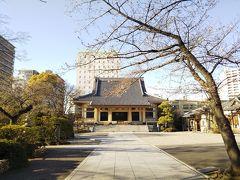 江戸資料館通りにある「霊巌寺」  江戸時代、寛政の改革で有名な松平定信が眠っているそうです。 手前は、桜の木。 満開になったら、本堂といい写真になりそう…