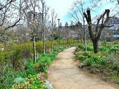 京王フローラルガーデン・アンジェ http://www.keio-ange.info/  日付変わって本日は春を感じにお花見に行ってみようと思います。友人の家が近いので遊びに行きがてらね。