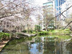 清水谷公園の桜  五分咲き程度でしょうか、そこそこ咲きそろっていました。