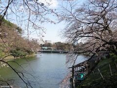 千鳥ヶ淵緑道ボート場  千鳥ヶ淵ではボートに乗ってお花見をする人が多いのですが、 新型コロナの影響でボート営業はお休みでした。