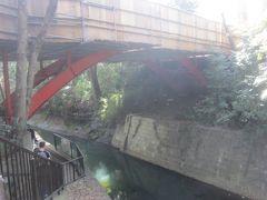 渓谷に降りると先ほど歩いてきた道に架かるゴルフ橋を潜ります 橋の名前は、昔はこの辺に目黒蒲田電鉄経営の等々力ゴルフコースがあったことに由来するそうです
