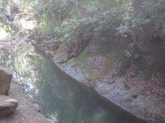 等々力渓谷は谷沢川にある渓谷