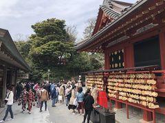 北鎌倉側から入ると、長い階段を上らずに本堂の前に出ます。
