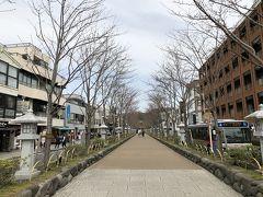 鶴岡八幡宮を出て、段葛を歩いて、鎌倉駅近くの二の鳥居まで。 ここは桜並木ですが、オールつぼみでした。