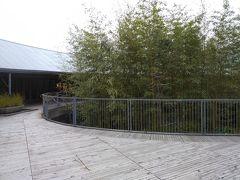 次は牧野植物園。 知らなかったが、日本の植物学ですごい人を敬意を表して 作られたらしい。