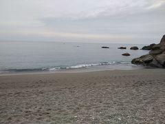 でも、浜にやってきた。