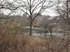途中、セントラルパークの園内も垣間見ることが出来ました。