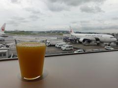 羽田空港から出発です。  ラウンジで飛行機を眺めながら搭乗を待ちます。