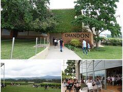 二件目のワイナリーは、超有名な「Domaine CHANDON」。  多くの観光客で賑わっていましたが、試飲コーナーには日本人スタッフもいて、丁寧に説明をしてくれたので、よくわかりました。
