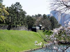 鎌倉の我が家の周辺ではまだソメイヨシノは咲き始めたばかり。お花見には程遠い状況なので、桜を愛でに東京まで遠征。