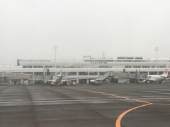 少し霞んだ天気の中、鹿児島空港に到着。