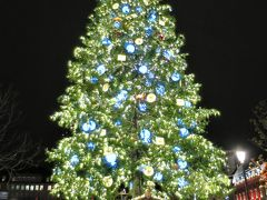 わぁ~、大きなクリスマスツリー♪(^o^)