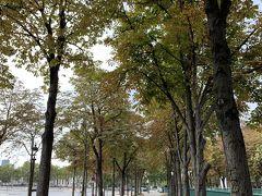 コンコルド広場へ。 イベントをしてたのか、警備の方がたくさんいました。9月初旬のパリは秋まっしぐら。
