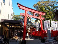 岐阜県、「道の駅クレール平田」の近くに、「千代保稲荷神社」があるというので行ってみることにしました。食べ歩きが楽しいお稲荷さんみたいで(*´▽`*)地元ではお千代保稲荷(おちょぼいなり)と呼ばれることが多く、通称「おちょぼさん」として親しまれているなんだそうです。創建は平安時代とか!  --------------- 平安時代、源八幡太郎義家の六男の義隆が分家する際、森の姓をもらいうけ、義家より「先祖の御霊を千代に保て」と祖神と共に宝剣と義家の肖像画を受け賜わったのが始まりと伝えられる。千代保稲荷神社の名も、この言葉からきている。 --------------- wikiより引用:https://ja.wikipedia.org/wiki/%E5%8D%83%E4%BB%A3%E4%BF%9D%E7%A8%B2%E8%8D%B7%E7%A5%9E%E7%A4%BE  無料の駐車場もありますが、台数が少ないのですぐに満車になります。周辺の有料駐車場の料金は1回300円程度とお安いので、満車の際は待たずに有料に入れるのが吉かと思います。待ち時間がもったいない~。  鳥居をくぐると、油揚げとロウソクをセットで50円で売るお店がありました。お供えアイテムですね。