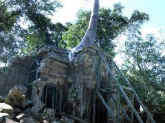 そして、少し離れて向かったのがタプローム遺跡。   遺跡がガジュマルの根や榕樹に覆われているのが特徴です。 生命力を存分に感じ取ることができます。