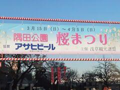 隅田公園-1 桜まつり(浅草)   50/    5