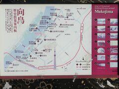 隅田公園-2 桜橋 花見   50/    27