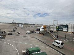 9:35発 フィリピン航空435便 セブ島へは直行便で着きます。