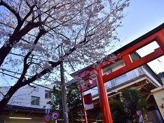 西武新宿線の朝の東伏見駅にやって来ました