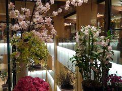 花屋さんにも桜。