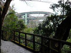 大滝に向う道からは河津ループ橋が見えました。 浄蓮の滝を含め七滝巡りもかなり歩きがいが有りました。