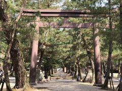 松の参道です.「中央の路は神様が行き来するので,参拝する人は左右の端のどちらかを歩きます」と言われていますが,現場の注意書きには「松の根の保護のため 参道左右をお進み下さい」とだけしか書いてありません.ネットで見た古い写真では,中央の路を一般の参拝者が歩いている様子が伺えますが,本当はどうなんでしょうね?