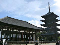 興福寺の代表的な建物2つ。左が「東金堂」右が「五重塔」。どちらも国宝です。
