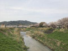 竜田川を見れる場所に着きました。