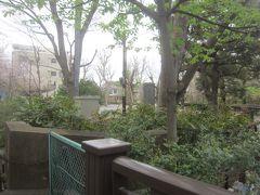 江古田公園 妙正寺川と江古田川が合流するこの公園ですが