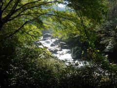 木津川から支流の布目川に沿った遊歩道へ。