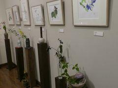 「外山康雄 野の花館」 野の花の絵とその実物がその前に活けてあります。 わかりやすい展示。いいですねえ。