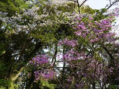 大多喜城の二丸公園
