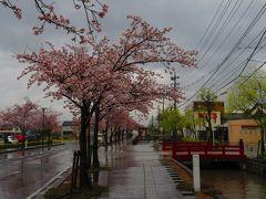 高瀬川  出雲のメインストリートだった河畔には、今も古い街並みが残り、絵になる風景が散策しながら楽しめます。