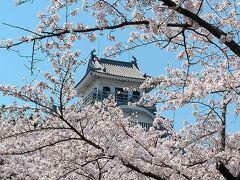 モンデクール長浜に車を停めたまま、歩いて駅の向こうの長浜城へ! 桜は満開! 日本のお城と桜のコラボってどうしてこんなに美しいんでしょうね!  実は以前に、長浜城を見に来た事はあります。 滋賀に引っ越して来たばかりで、あの頃はまだ車の免許すら持ってなかったので、電車で来たんですよねー。 4年後にmy carで同じ場所に来る事なんてあの時は想像すらしてなかったです。 https://4travel.jp/travelogue/11094216 (2016年1月)