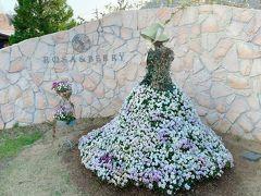 次に訪れたのは、米原のローザンベリー多和田。   1年前のちょうど同じ時期、妹が姪っ子たちを連れて滋賀に遊びに来た時に訪れた事があります。 その時は、ちびっ子たちを追いかけていたので殆ど花を楽しむ時間はなくて…。 今年は1人でゆっくり季節の花を楽しめそうかな。  前回、訪れた時の旅行記↓ https://4travel.jp/travelogue/11475792 (2019年4月)
