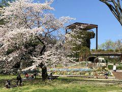 福岡市動植物園展望台