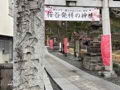 まずは石川町の「石都々古和氣神社」さま。