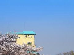 白水阿弥陀堂から、車でゆっくり30分ほどで、「ときわの宿 浜とく」に到着!おおっ!桜も丁度見ごろでラッキー!