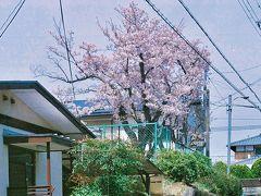 京阪バス (大津エリア)