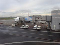 2019/10/15、愛媛・高知の旅の始まりです。6:10に羽田空港に到着。家を出た時は小雨が降っていましたが、羽田に到着した時は雨もやみ、JAL431便(松山空港行き)はほぼ予定通り7:25に出発です。途中、富士山は残念ながら見ることはできませんでした。