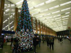 テルミニ駅には去年と同じ大きなクリスマスツリーがあった。